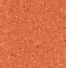 Grabo Fortis Coral